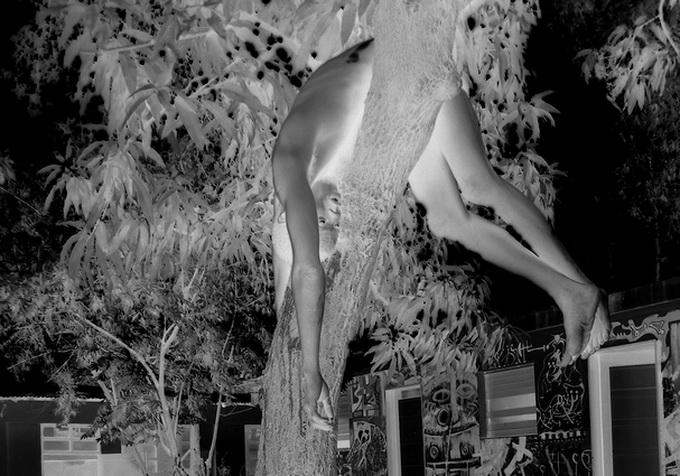 Apparitions      Paul Bogaers & Myriam Mihindou