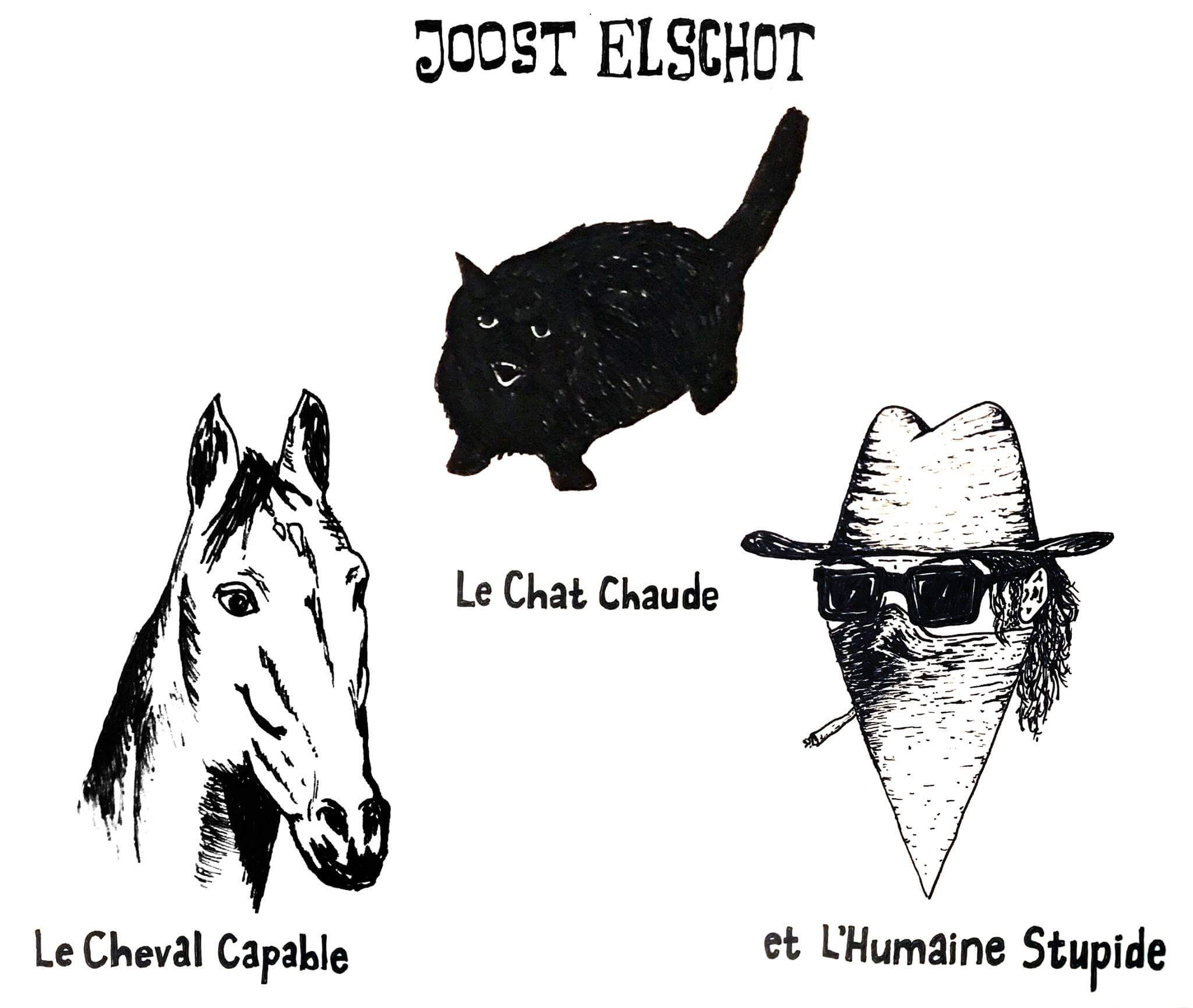 Joost Elschot: Le chat chaud, le cheval capable et l'humaine stupid