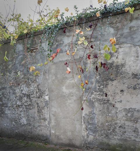 Poëzie Utrechtse muren