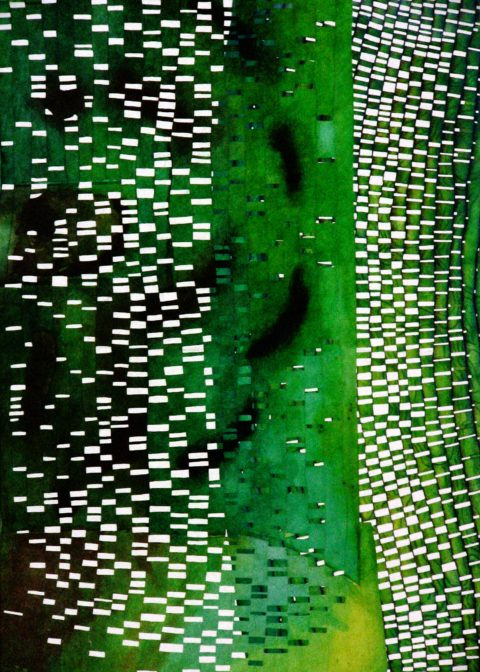 Schaduwbos