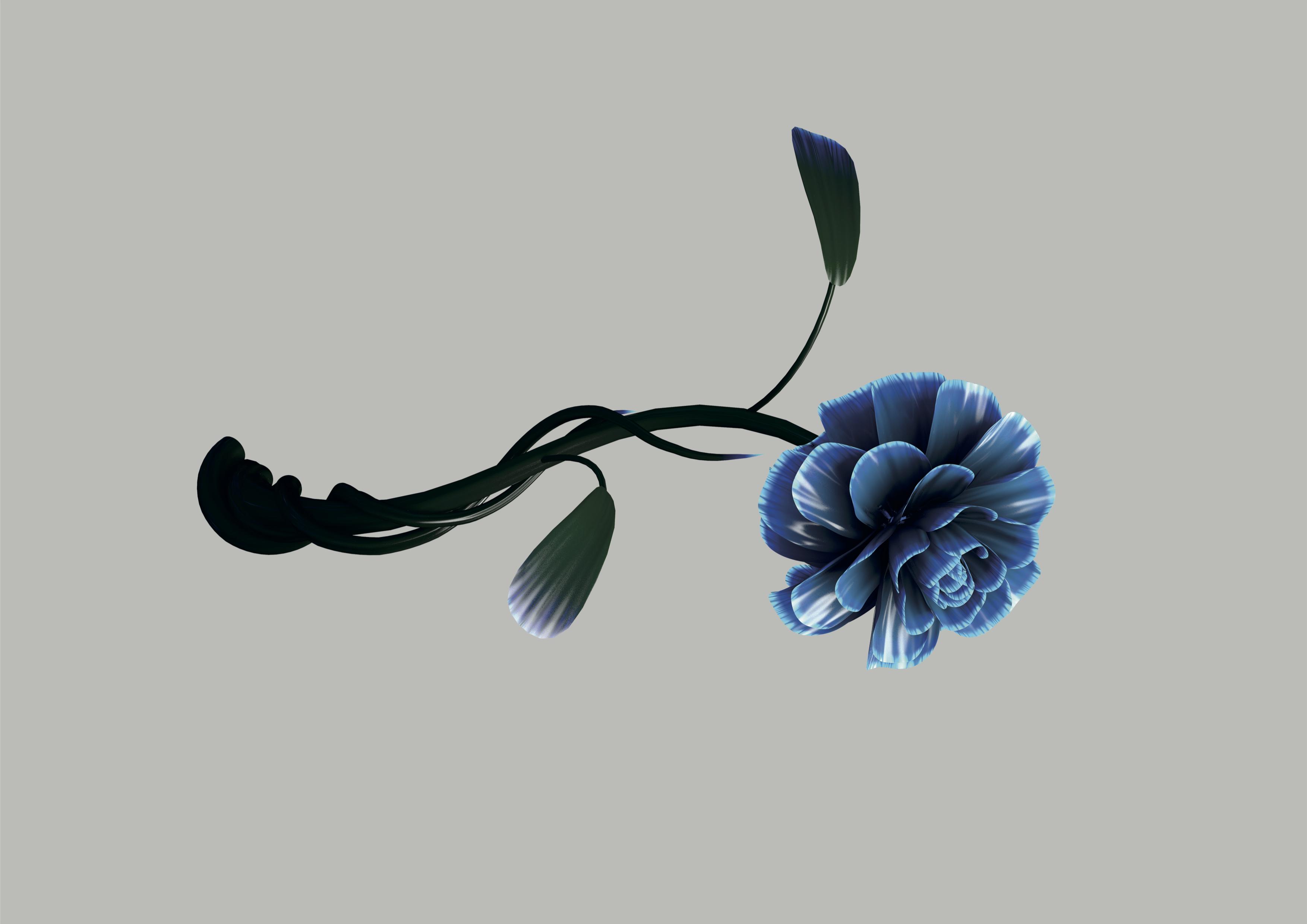 Fake Roses – Tom Putman